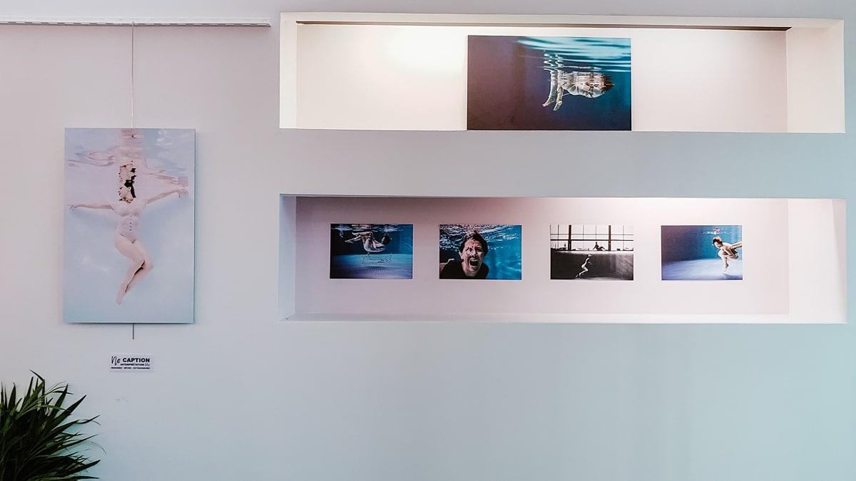exposition photographie sous-marine6
